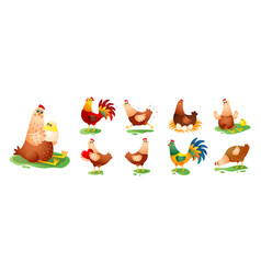 chicken hen cock in different poses set isolated vector image