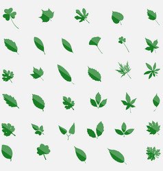 green set of 35 leavs icons isolated on background vector image