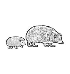 Mother hedgehog with cub sketch vector