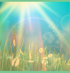 Nature spring or summer vintage style background vector