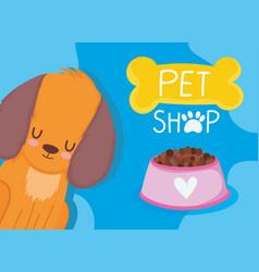 pet shop little dog bowl food cartoon domestic vector image