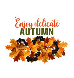 autumn oak acorn or rowan berry fall poster vector image vector image