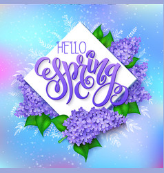spring hand lettering - hello spring lilac vector image vector image