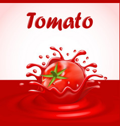 A splash of juice of a tomato vegetable vector