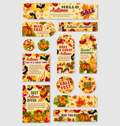 autumn sale tag discount offer label and card set vector image