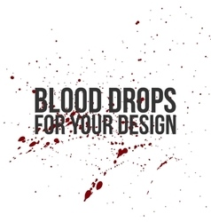Blood Drops Texture Splatter Background vector image