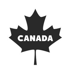 Canada day lettering in maple leaf silhouette vector