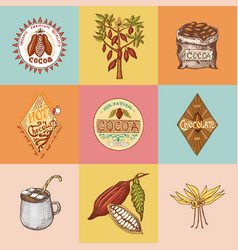 cocoa beans and hot chocolate logos modern vector image