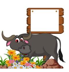 cute buffalo cartoon posing with blank board for y vector image vector image