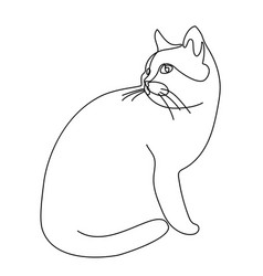 continuous line drawing cat vector image