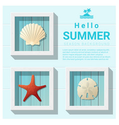 hello summer background with sea creatures vector image