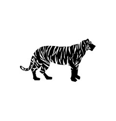 pattern black lines tiger silhouette vector image