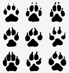 Paw dogs vector