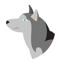 Pedigree dog head husky siberian vector