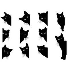 set black cats looking out corner vector image