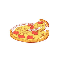 Tasty italian pizza isolated icon vector