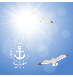 Shining summer sun with seagulls vector image