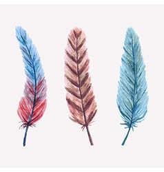 set of watercolor feathers vector image vector image