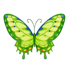 colorful bright butterflies vector image
