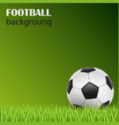 football on green grass background template vector image