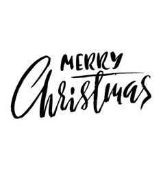 Hand drawn phrase merry christmas modern dry vector