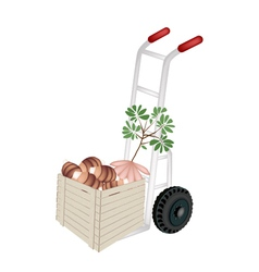 Hand Truck Loading Fresh Taro in Shipping Box vector