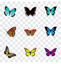 Set of beauty realistic symbols with precis almana vector