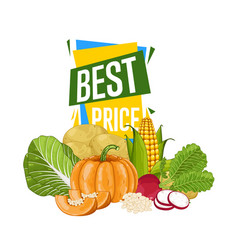 best price discount poster with fresh vegetable vector image vector image