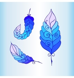 Hand Drawn Ornament with feathers vector image vector image