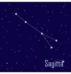 The constellation Sagitta star in the night sky vector image vector image