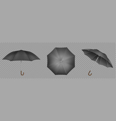 black umbrella parasol top side and front view vector image