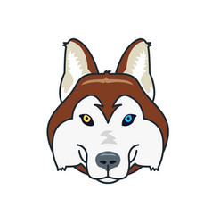 husky dog head mascot flat style different eyes vector image