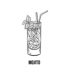 Mojito cocktail vector