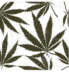 Seamless pattern with leaves of hemp marijuana vector