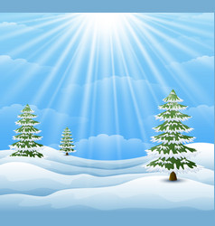 winter landscape with pine tree and sunlight backg vector image