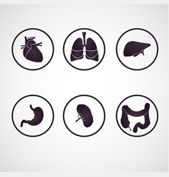 human body parts logo set vector image vector image