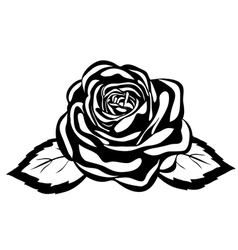 abstract black and white rose vector image vector image