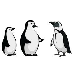 Emperor penguins vector