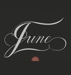 hand drawn lettering june elegant vector image