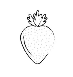 Figure delicious and healthy strawberry fruit vector
