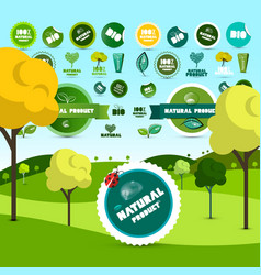 natural product and bio labels on meadow vector image vector image