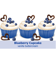Blueberry cupcakes realistic 3d detailed vector