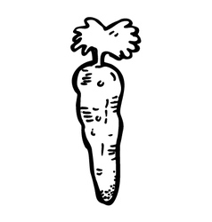carrot doodle vector image vector image