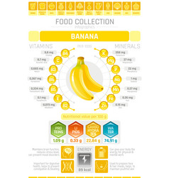 Food infographics poster banana fruit vector