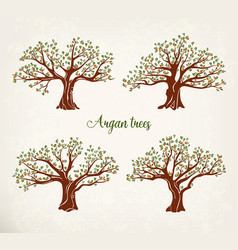 Set of argania or argan fruit trees with leaves vector