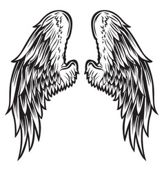 wings bird black white 999 vector image