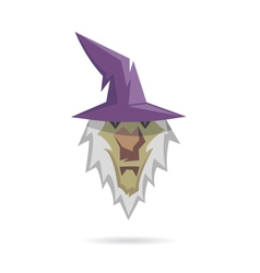 Wizard isolated on a white backgrounds vector image