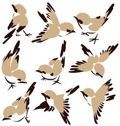 bird drawing vector image