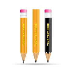 3d pencils icon vector image