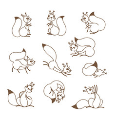 cartoon cute squirrel little funny squirrels vector image